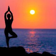 Meditation Or Mindfulness