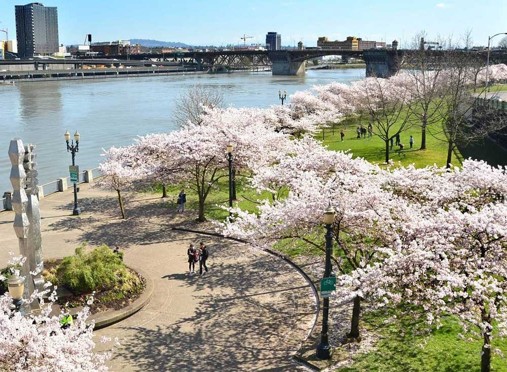 Best Parks in Portland